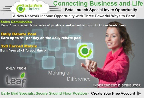 get more traffic, leads and sales with Leafs revolutionary product that connects business, people and life.