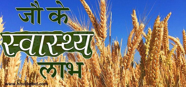 Barley Hindi Meaning & Benefits,Benefits of Barley in Hindi