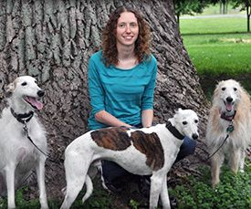 Registered Veterinary Technician Julie with sighthounds Sullivan, Stewart, and Sasha Fierce. #AnimalHospital #Veterinarian #Pets #KAH #FrederickMaryland #Whippet #Galgo #Sighthounds