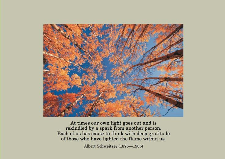 """""""At times our own light goes out and is rekindled by a spark from another person.  Each of us has cause to think with deep gratitude of those who have lighted the flame within us.""""  Albert Schweitzer (1875-1965).  ESA Thanksgiving 2009.  http://esacompany.com/image/TGCards/TGCPin2009.jpg"""