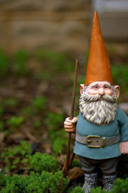 On guard. He is the watchman for his friends, family and neighborhood. This Gnomie is determined to keep everyone secure. Especially the donuts lol  :)            by Durelle