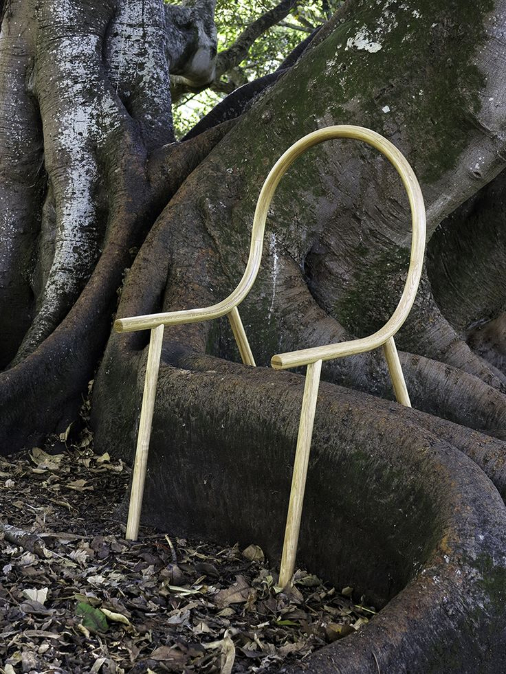 clark bardsley uses steam-bent oak to design an anti-chair