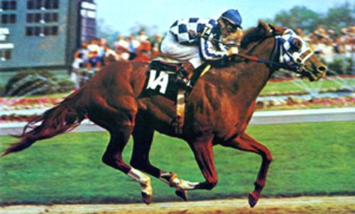 Secretariat 1907-1989 a racing legend that won the Triple Crown. Winner of the Belmont Stakes by 31 lenghts. Voted Greatest Race Horse of all Time.
