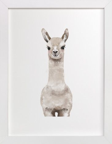 Baby Animal Llama by Cass Loh at minted.com