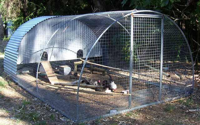 Hoop House Chicken Run