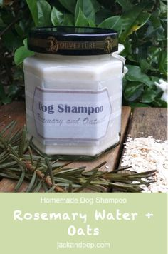 SUPER moisturising homemade dog shampoo for pups who suffer from dry skin and fur. Check it out at jackandpep.com!