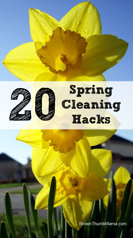 20+ Amazing Spring Cleaning Hacks