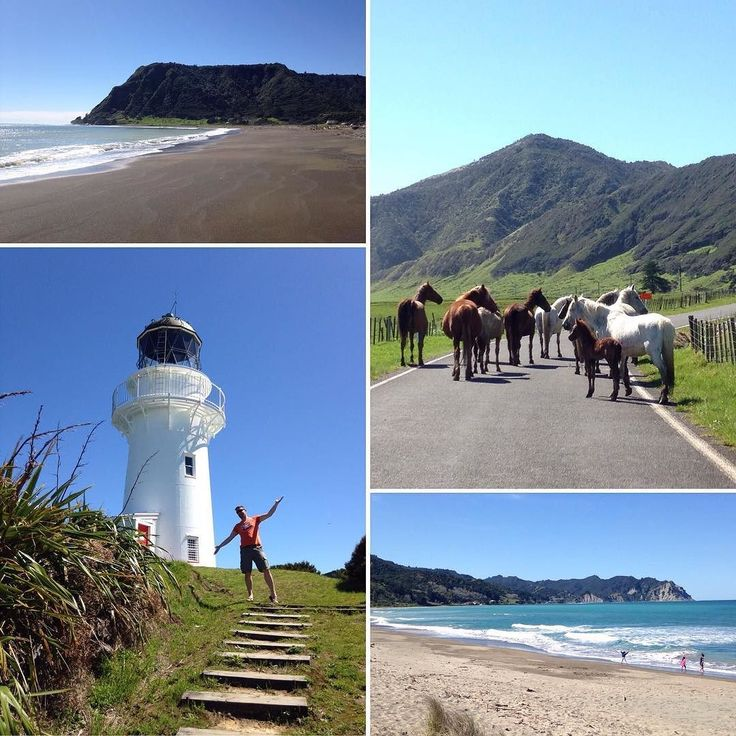 The East Cape of #NewZealand's North Island is one of the first places in the world to see each new day  and therefore each New Year! Happy New Year everyone! #itsTime2Go!