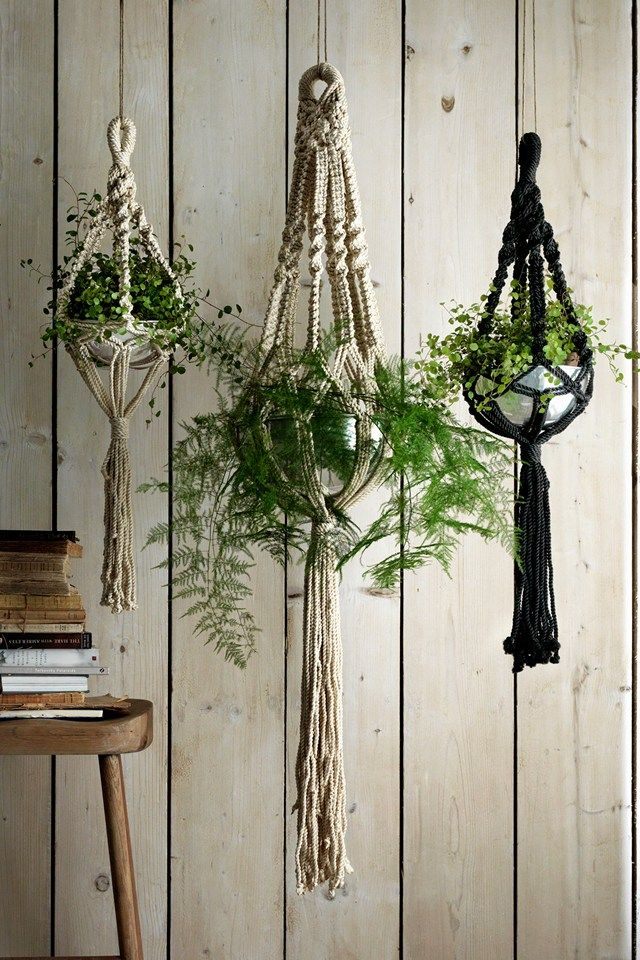 "<a href=""http://www.grahamandgreen.co.uk/macrame-plant-hangers"" target=""_blank"">Graham and Greene</a>. Macramé planter holder. <span class=""price""><span class=""price"">£47 - <span class=""price""><span class=""price"">£67</span></span></span></span>"