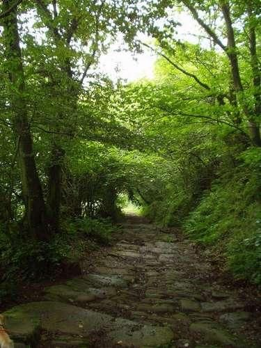 Pasear por la calzada romana, Bárcena de Pie de Concha #Cantabria #Spain #Travel