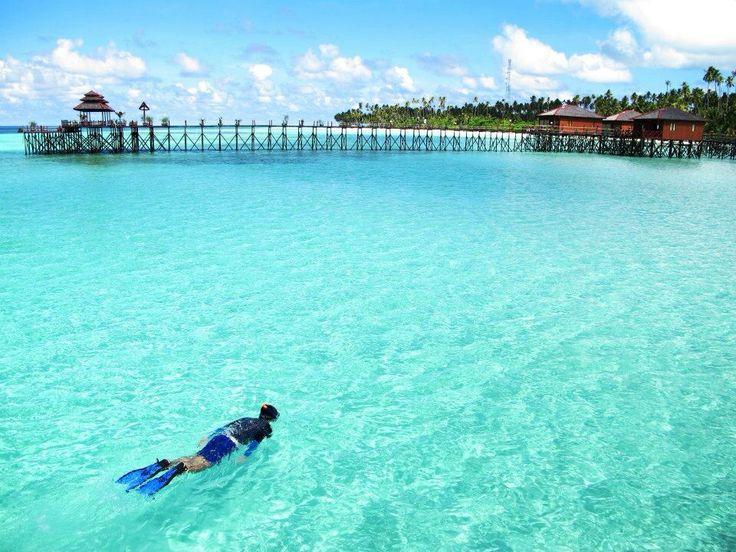 Snorkeling at Maratua Island, Derawan archipelago East Kalimantan