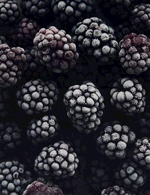 Jenni Lenita - Blackberries