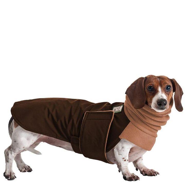 Miniature Dachshund Dog Winter Coat Overstocked Brown Coat Sale