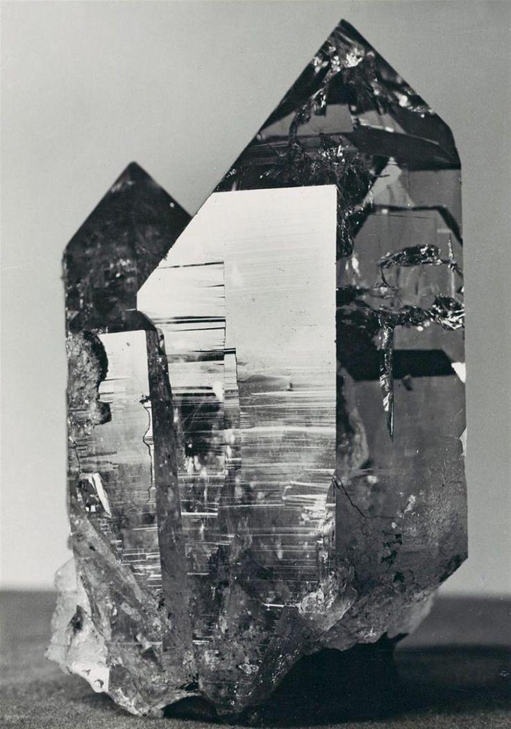 Image result for Albert Renger-Patzsch