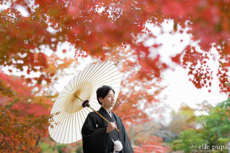 秋色に染まる大覚寺*京都ロケーション撮影   *elle pupa blog*