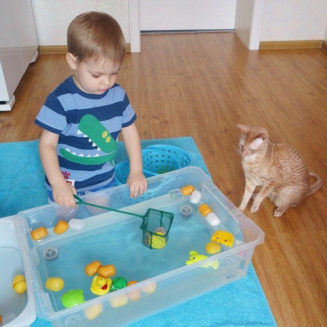 Наши любимые водные игры, на этот раз с #артёмкинкиндер. Причем готовились вместе с Тёмой, но интерес у него не угас. Сначала игрушки разложили по яйцам, наполнили контейнер водой, вооружились сачком, шумовкой  и вперёд, наперегонки кто больше выловит яиц, далее конечно раскрывали их, радуясь сюрпризам . #артёмке2г3м #артёмкинкот