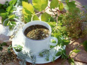Thee uit eigen tuin: citroenmelisse en paardenbloemen | Voedzo