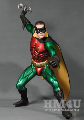 Batman Forever Robin 1 6 Vinyl Model Kit Fall Fun
