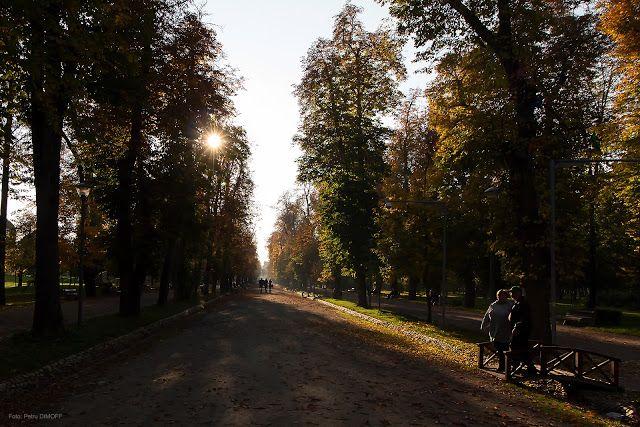 P e t r u     D I M O F F : Toamna / Autumn