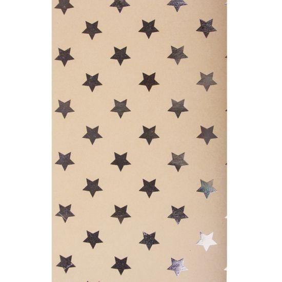 Hobby karton met zilveren sterren. Een groot vel hobby karton met zilveren sterren. Formaat: ongeveer 50 x 70 cm. 300 grams.