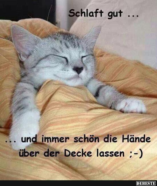 Schlaf Schön Lustig