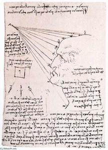 Estudo do efeito da luz sobre uma cabeça de perfil (fac-símile) - (Leonardo Da Vinci)