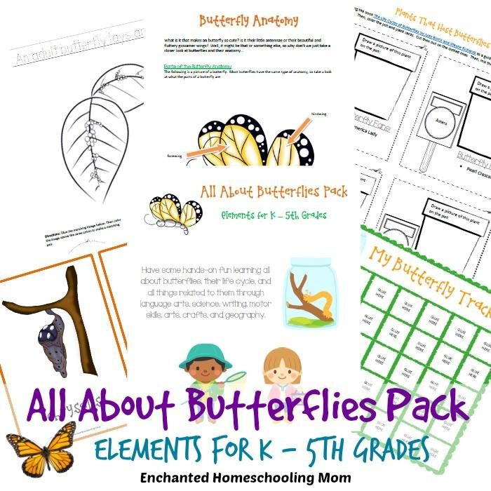 All About Butterflies Pack - Enchanted Homeschooling Mom