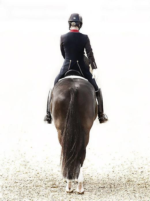 Valegro - Current Olympic, World, and European gold medallist, world record holder, scores of over 90%.