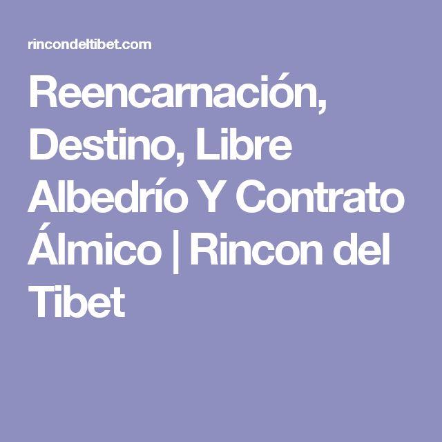 Reencarnación, Destino, Libre Albedrío Y Contrato Álmico | Rincon del Tibet