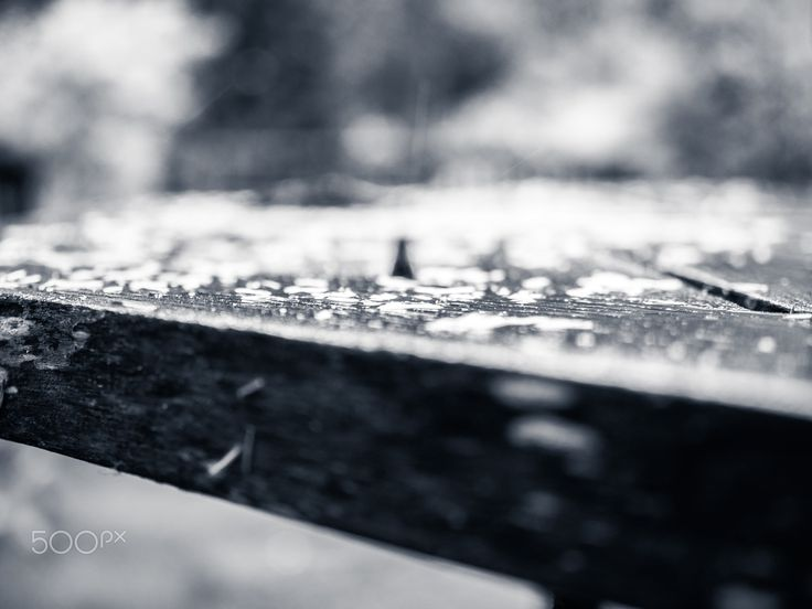 Wet - Under storm, while it is still in not too extreme, outdoor table is covered by rain and some vegetation falling off.