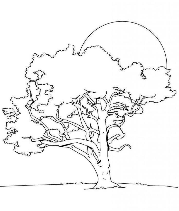 Malvorlage Baum