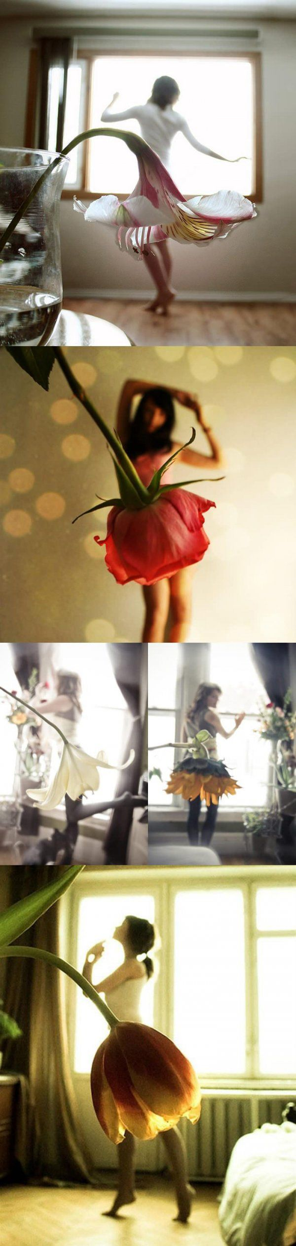 Blumen-Kleider - Win Bild | Webfail - Fail Bilder und Fail Videos