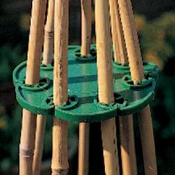 WigWam Support – a clever way to strongly support canes for runner beans and swe… – Great Gardening Tools