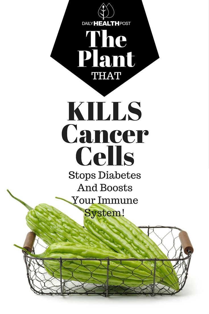 The Plant That Kills Cancer Cells, Stops Diabetes And Boosts Your Immune System…