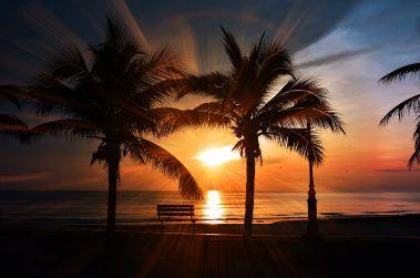 """El SOL como CÓDIGO de LUZ, representa el bienestar, la vida, la positividad, la luz, la claridad, la precisión, la conciencia… cualidades de las que nos """"apropiamos"""" si tomamos CONSCIENTEMENTE, 20 minutos de sol al día."""