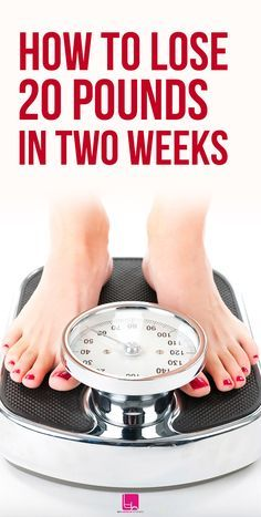 How much weight can you lose in 8 months on weight watchers