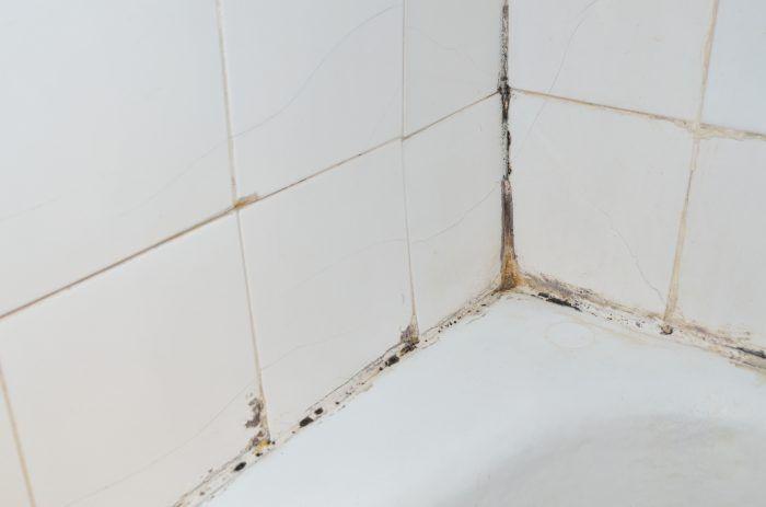 Schoonmaken Badkamer Badkamertegels Tegels Schimmel Voegen Tegelvoegen Tips Badkamer Tegels Schoonmaken Douche Schimmel En Badkamer