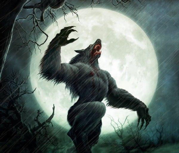 5 – Lobisomem Origem: germânica Lobisomens são criaturas mitológicas ou folclóricas que são seres humanos com a capacidade de se metamorfosear em um lobo (ou algo parecido com um lobo), seja propositadamente, através de magia, ou por terem sido amaldiçoadas. O cronista medieval Gervase de Tilbury foi quem aparentemente associou a transformação com o aparecimento da lua cheia, no entanto, há evidências de que a associação existia entre os gregos antigos, aparecendo nos escritos de Petrônio.
