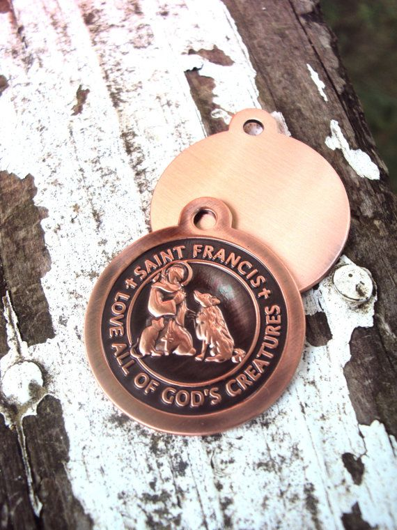 31 best st francis images on pinterest san francisco saint st francis of assisi hand engraved pet id tag bronze saint francis pendant with hand engraving dog pet gift 32mm f1 aloadofball Gallery