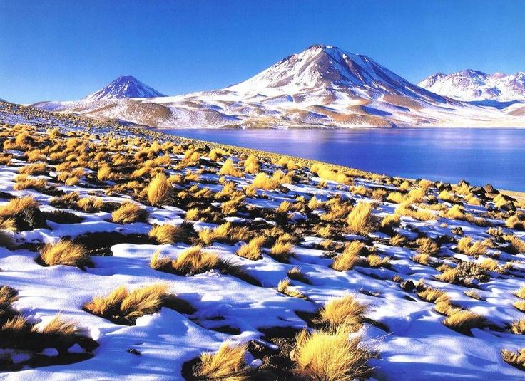 A pesar de que el desierto de Atacama tiene partes increíblemente áridas -en algunas no hay registro de lluvia- también hay sectores donde incluso cae nieve. Increíble contraste, ¿no crees?