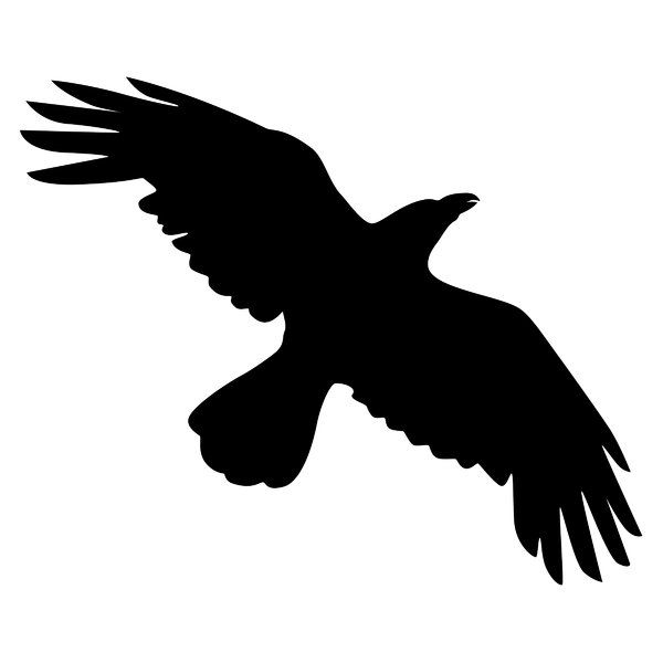 Silhouette Crow: Flying Crow black on white | Tattoo ...