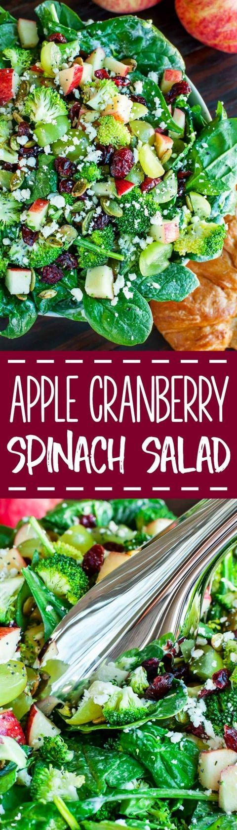 This colorful Apple Cranberry Spinach Salad with Broccoli and Feta is crisp, refreshing, and the perfect blend of savory sweet to enjoy all Fall and Winter long!