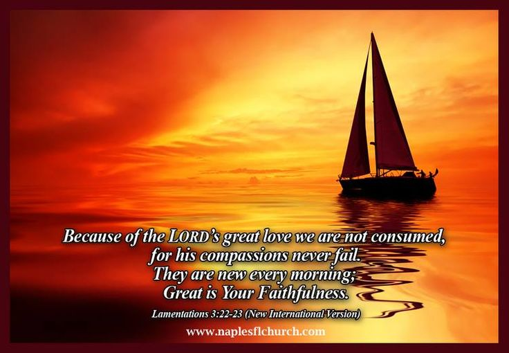 17 best images about biblical verses  u0026 quotes on pinterest