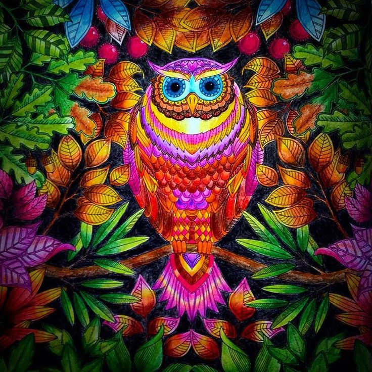 @johannabasford @sztuka_kolorowania #johannabasford #sztukakolorowania #tajemnyogród #tajemny_ogród #thesecretgarden #secretgarden #secretgardencoloringbook #chill #owl #garden #colors #jardimsecreto #kolorowankadladorosłych #coloringbook #coloringbookforadults #coloring_masterpieces