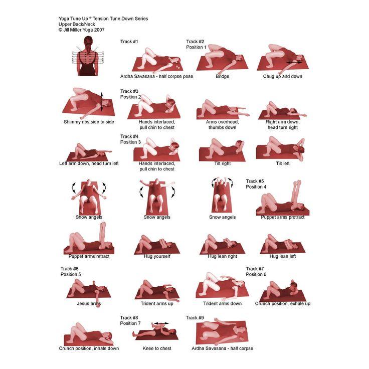 Best 25 Back Muscles Ideas On Pinterest Back Workouts