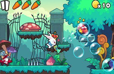 Rabbit Journey iPhone game