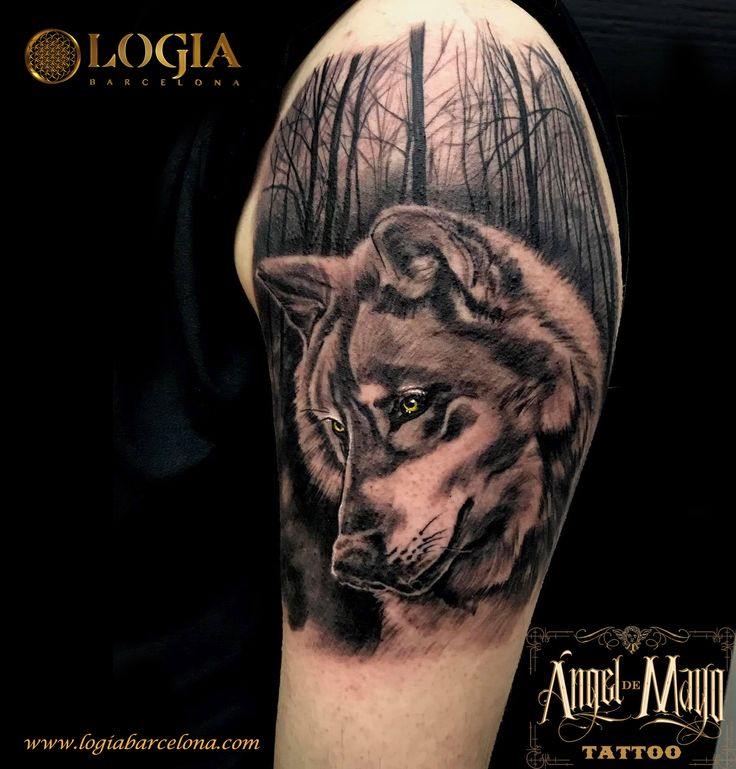 Φ Artist ÁNGEL DE MAYO Φ Info & Citas: (+34) 93 2506168 - Email: Info@logiabarcelo... www.logiabarcelon... #logiabarcelona #logiatattoo #tatuajes #tattoo #tattooink #tattoolife #tattoospain #tattooworld #tattoobarcelona #tattooistartmag #tattoosenbarcelona #ink #arttattoo #artisttattoo #inked #inktattoo #tattoocolor #retrato #portrait #tattooartwork #realismo #wolf #lobo