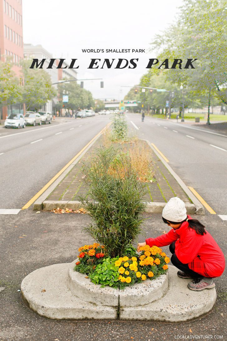 VIsiting the World's Smallest Park - Mill Ends Park in Portland Oregon // http://localadventurer.com
