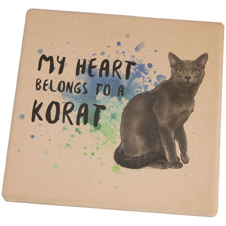 "If you're a cat lover then this is for you! ""My heart belongs to a Korat Cat"" is printed over a water color splatter with a painting of a cat. This exclusive design is brought to you by Lucia Guarnott"