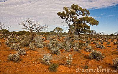 The australian landscape, south australia